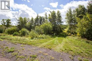 Photo 4: 565 Immigrant RD in Cape Tormentine: Vacant Land for sale : MLS®# M137540