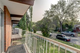 Photo 13: 450 19 Avenue NW in Calgary: Mount Pleasant Semi Detached for sale : MLS®# A1036618