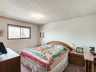 Photo 16: 64 Sanderling Hill in Calgary: Sandstone Valley Detached for sale : MLS®# A1090715