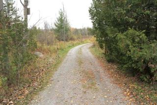 Photo 23: 208 Mcguire Beach Road in Kawartha Lakes: Rural Carden House (Bungalow) for sale : MLS®# X4970159