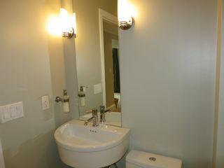 Photo 29: 3160 SPRINGTHORNE CRESCENT in Springs: Steveston North House for sale ()  : MLS®# V1054245