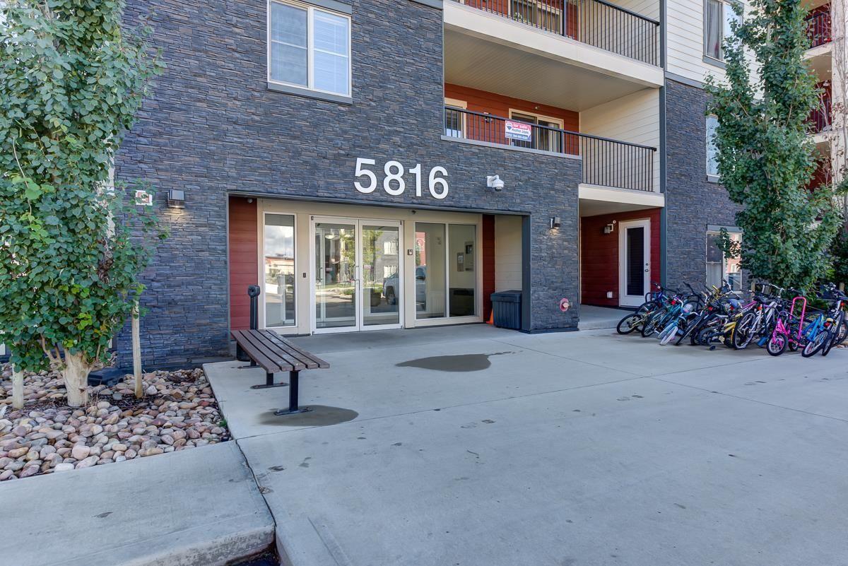 Main Photo: 204 5816 MULLEN Place in Edmonton: Zone 14 Condo for sale : MLS®# E4262303