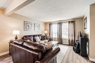 Photo 7: 173 Martinglen Way NE in Calgary: Martindale Detached for sale : MLS®# A1144697