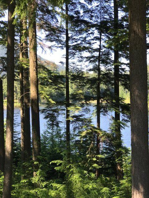 view to lake