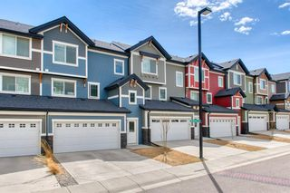 Photo 39: 22 Nolan Hill Heights NW in Calgary: Nolan Hill Row/Townhouse for sale : MLS®# A1101368