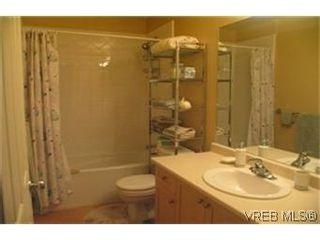 Photo 6: 2 2650 Shelbourne St in VICTORIA: Vi Oaklands Row/Townhouse for sale (Victoria)  : MLS®# 439697