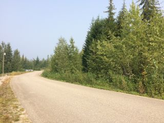Photo 9: Lot 22 Ridge Road: Eagle Bay Land Only for sale (Shuswap)  : MLS®# 10167444
