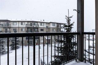 Photo 29: 304 1188 HYNDMAN Road in Edmonton: Zone 35 Condo for sale : MLS®# E4248234