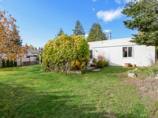 Photo 42: 532 BAMBRICK PLACE in COMOX: CV Comox (Town of) House for sale (Comox Valley)  : MLS®# 800011