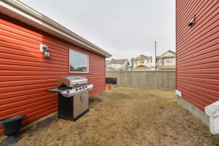 Photo 38: 3638 12 Street in Edmonton: Zone 30 House for sale : MLS®# E4234751
