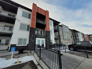 Photo 19: 216 16 Sage Hill Terrace NW in Calgary: Sage Hill Apartment for sale : MLS®# A1075737