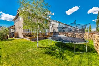 Photo 39: 207 Willowmere Way: Chestermere Detached for sale : MLS®# A1114245