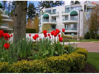 """Photo 20: 403 1765 MARTIN Drive in Surrey: Sunnyside Park Surrey Condo for sale in """"SOUTHWYND"""" (South Surrey White Rock)  : MLS®# F1415442"""