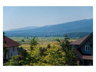 """Photo 9: 13670 229A ST in Maple Ridge: Silver Valley House for sale in """"Silver Ridge"""" : MLS®# V946925"""