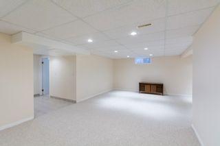 Photo 34: 11428 37B Avenue in Edmonton: Zone 16 House for sale : MLS®# E4262550