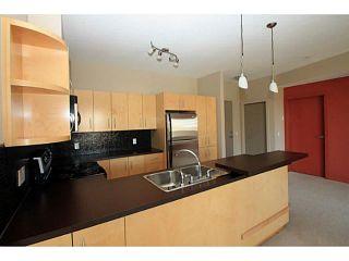Photo 7: 213 69 SPRINGBOROUGH Court SW in : Springbank Hill Condo for sale (Calgary)  : MLS®# C3567266