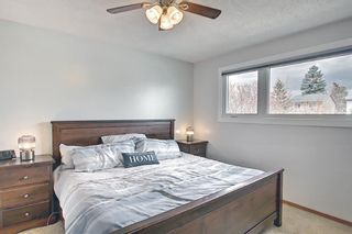 Photo 11: 80 Erin Grove Close SE in Calgary: Erin Woods Detached for sale : MLS®# A1107308