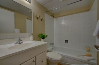 Photo 20: 309 8604 Gateway Boulevard in Edmonton: Zone 15 Condo for sale : MLS®# E4257711