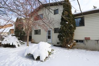 Photo 30: 547 Templeby Place NE in Calgary: Temple Detached for sale : MLS®# A1071164