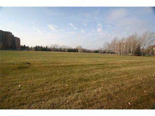 Photo 14: 204D 5601 DALTON Drive NW in CALGARY: Dalhousie Condo for sale (Calgary)  : MLS®# C3450207