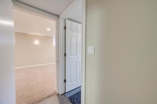 Photo 33: 8116 96 Avenue in Edmonton: Zone 18 House for sale : MLS®# E4253261