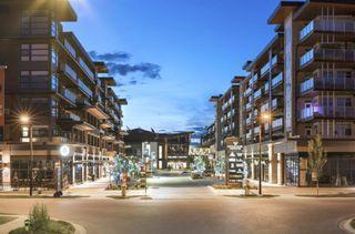Photo 20: 509 12 Mahogany Path SE in Calgary: Mahogany Apartment for sale : MLS®# A1142007
