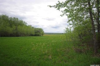 Photo 24: Weiss Lakefront Acreage in Big River: Lot/Land for sale : MLS®# SK834150