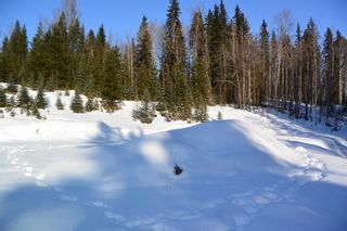 Photo 13: LOT A W 16 Highway in Smithers: Smithers - Town Land for sale (Smithers And Area (Zone 54))  : MLS®# R2533470