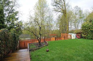 Photo 18: 10463 SLATFORD Street in Maple Ridge: Albion House for sale : MLS®# R2159423