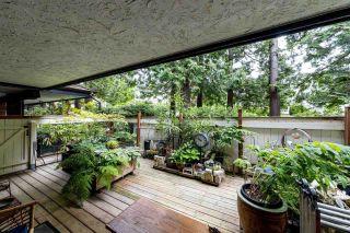 "Photo 14: 205 1319 MARTIN Street: White Rock Condo for sale in ""The Cedars"" (South Surrey White Rock)  : MLS®# R2553279"