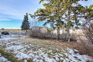Photo 23: 451 Lysander Drive SE in Calgary: Ogden Detached for sale : MLS®# A1053955