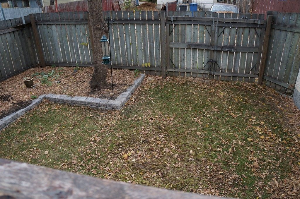 Photo 51: Photos: 224 Lipton Street in winnipeg: Wolseley Single Family Detached for sale (West Winnipeg)  : MLS®# 1407760