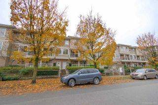 """Photo 23: 208 2432 WELCHER Avenue in Port Coquitlam: Central Pt Coquitlam Townhouse for sale in """"GARDENIA"""" : MLS®# R2522878"""