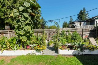 Photo 36: 11673 MORRIS Street in Maple Ridge: West Central House for sale : MLS®# R2617473