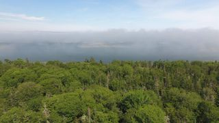 Photo 4: Lot Sandy Point Road in Shelburne: 407-Shelburne County Vacant Land for sale (South Shore)  : MLS®# 202115817