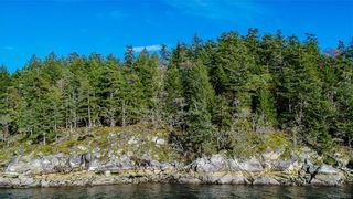 Photo 11: 8100 McPhail Rd in Central Saanich: CS Inlet Land for sale : MLS®# 838233