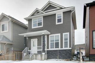 Photo 29: 9 Saddletree Drive NE in Calgary: Saddle Ridge Detached for sale : MLS®# A1088845
