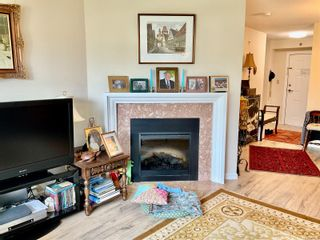 Photo 8: 308 3969 Shelbourne St in : SE Lambrick Park Condo for sale (Saanich East)  : MLS®# 866649