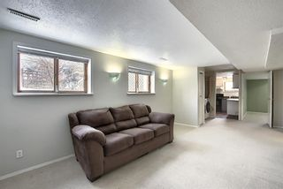 Photo 31: 65 Hawkville Close NW in Calgary: Hawkwood Detached for sale : MLS®# A1067998