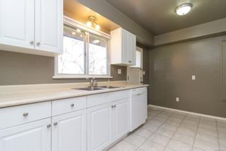 Photo 16: 3970 Bow Rd in : SE Mt Doug House for sale (Saanich East)  : MLS®# 869987