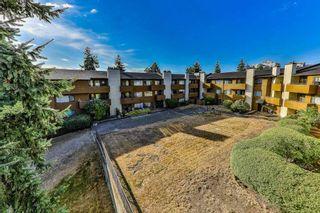 """Photo 18: 308 7295 MOFFATT Road in Richmond: Brighouse South Condo for sale in """"DORCHESTER CIRCLE"""" : MLS®# R2403556"""