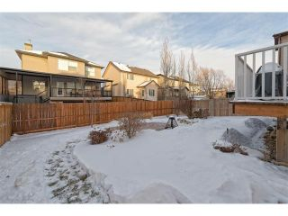 Photo 22: 289 West Lakeview Drive: Chestermere House for sale : MLS®# C4092730