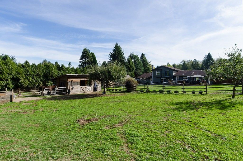 """Photo 50: Photos: 18295 21A Avenue in Surrey: Hazelmere House for sale in """"REDWOOD PARK-HAZELMERE"""" (South Surrey White Rock)  : MLS®# R2006941"""