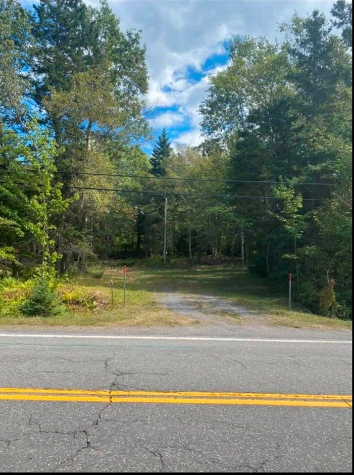 Main Photo: 4488 Little Harbour Road in Little Harbour: 108-Rural Pictou County Vacant Land for sale (Northern Region)  : MLS®# 202118097