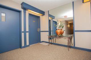 Photo 6: 408 7905 96 Street in Edmonton: Zone 17 Condo for sale : MLS®# E4241661