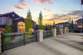 Photo 12: 3105 81 Street SW in Calgary: Springbank Hill Detached for sale : MLS®# A1153314