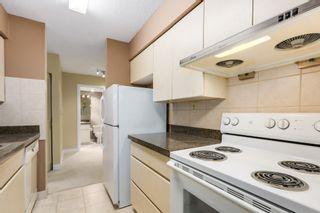 Photo 8:  in Villa Marine: Marpole Home for sale ()  : MLS®# V1095316