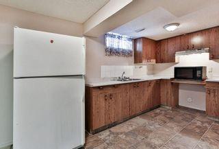 Photo 23: 1916 65 Street NE in Calgary: Pineridge House for sale : MLS®# C4177761