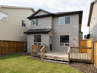 Photo 4: 155 Skyview Shores Crescent NE in Calgary: Skyview Ranch Detached for sale : MLS®# A1110098