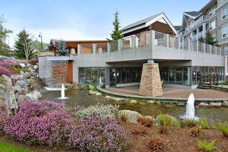 "Photo 13: 508 6460 194 Street in Surrey: Clayton Condo for sale in ""WATERSTONE"" (Cloverdale)  : MLS®# R2185737"